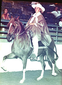 Azteca de Oro BSN Ridden by Patti Sexton at Reno