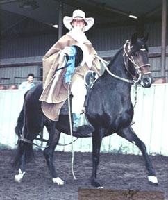 Gabriela de Amanecer Wins Mares Gait with Benni Barto Riding, Monterey CA, 1992